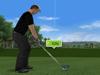 好玩遊戲:專業高爾夫球賽